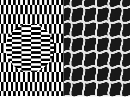 Surviving the quarantine with the Proaction Lab: Optical Illusions and Youtube videos